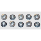 TIRE NUT (10PCS)