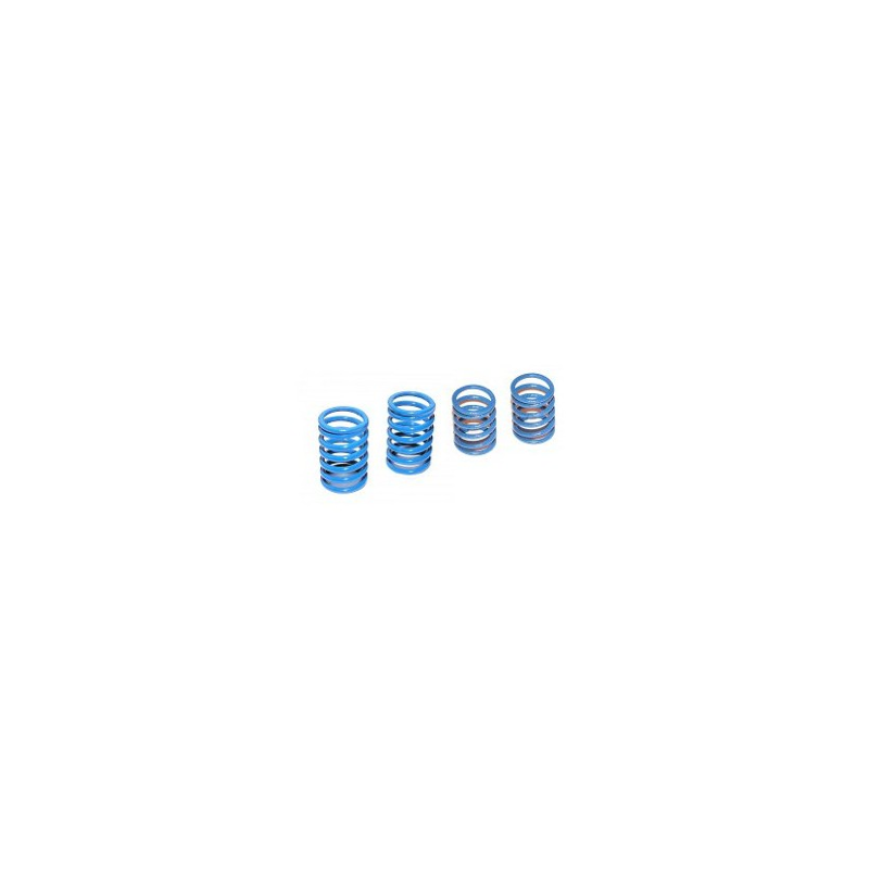 BLUE SPRING SET (4PCS)